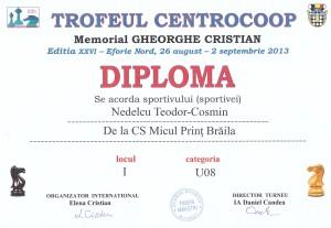 DIPLOMA EFORIE