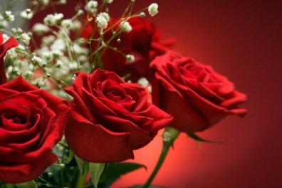 flori-dragoste